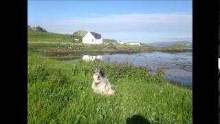 O Fhluir na h-Albann O Flower of Scotland sung by Fiona J Mackenzie