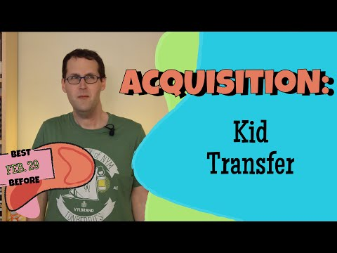 Transfer in Child L2 Acquisition