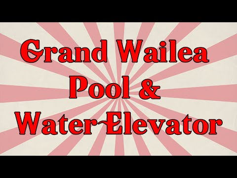Grand Wailea Pool & Worlds only Water Elevator