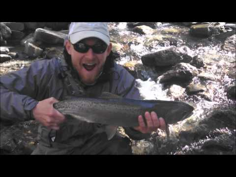 Fly Fishing The NEK In Vermont