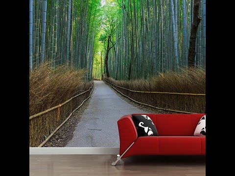 Beautiful Nature Wallpapers for Living Room Decor -clips2