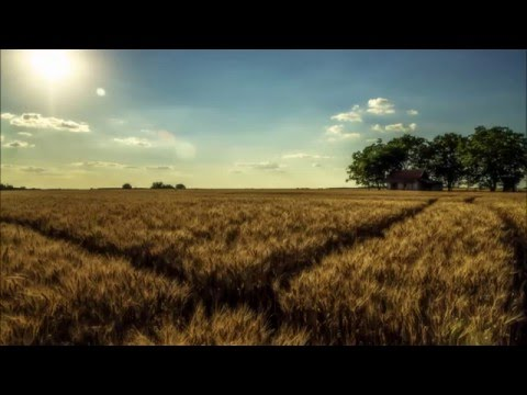 KENTON - Mezőgyán (Official Music)
