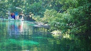 A Short Boat Ride on Springs of Lake Ohrid, Macedonia