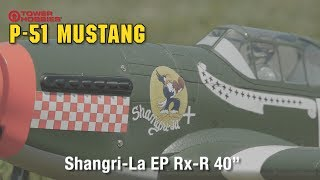 Tower Hobbies P-51B Mustang Shangri-La EP Rx-R