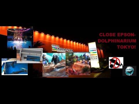 Dolphin Hunt Taiji - Boycott EPSON!