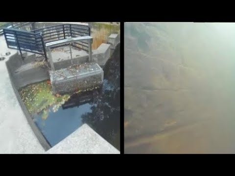 Underwater episode 40: Channahon State Park (site25/location4)