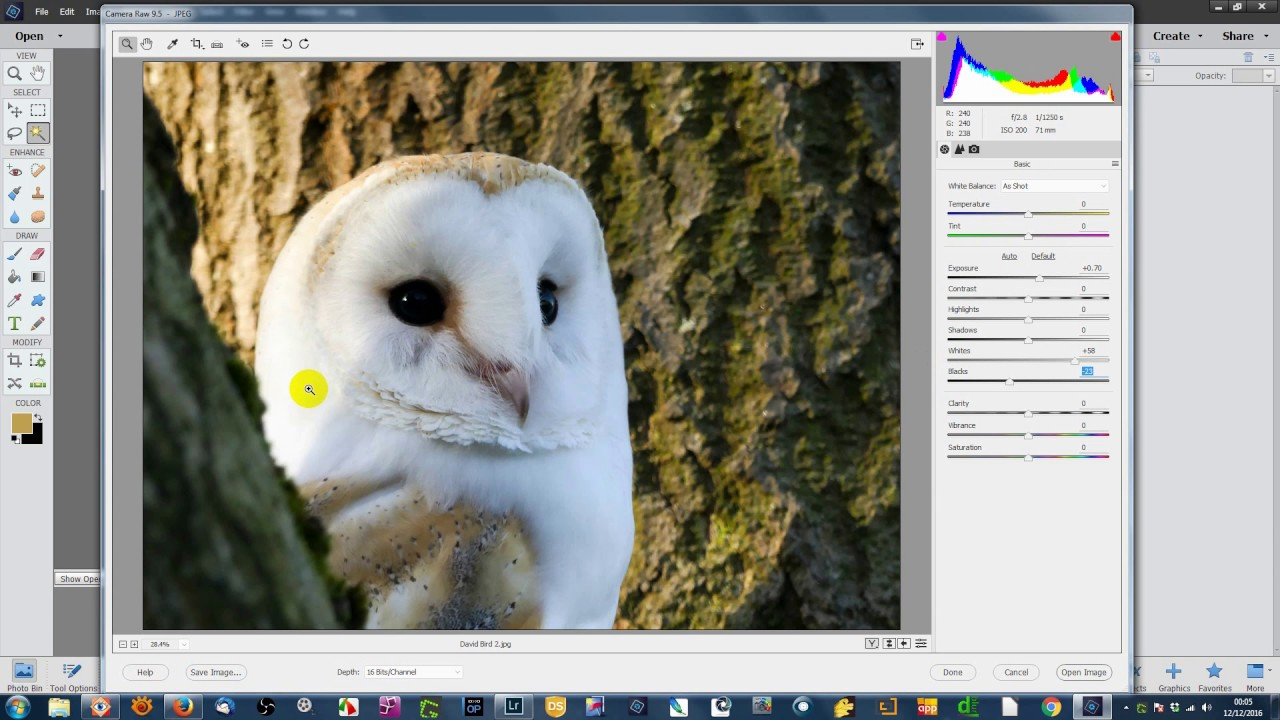 Editing JPEG images in Adobe Camera Raw from Adobe Elements - YouTube