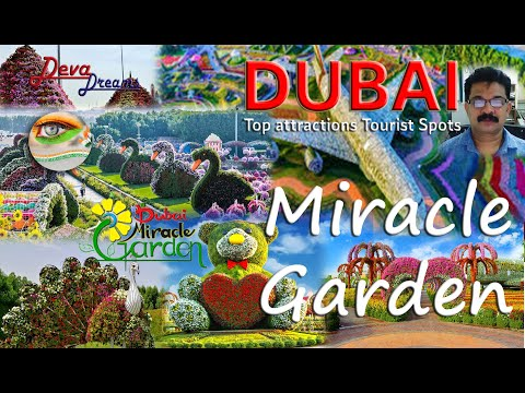 Dubai Miracle Garden,  World's largest natural flower garden