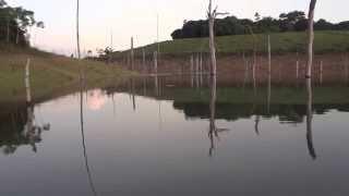 Pesca de Tucunaré Açu em Breu Branco - PA