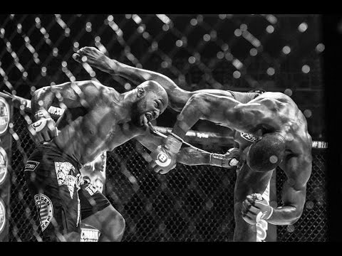 Bellator 154 Highlights