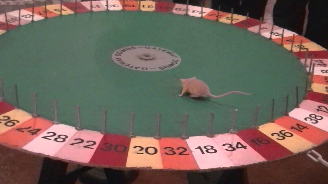 Mäuseroulette