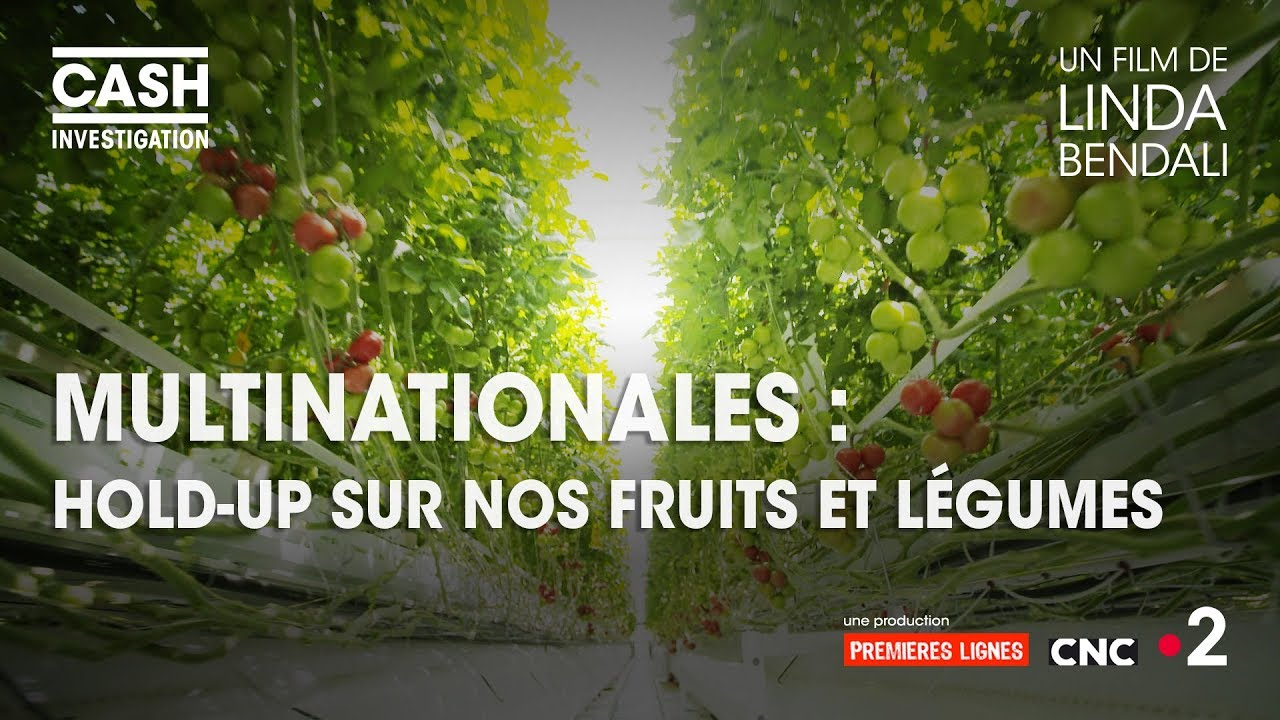 Download Cash investigation - Multinationales : hold-up sur nos fruits et légumes (Intégrale)