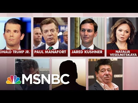 Donald Trump Jr: New Revelations Come To Light In Meeting | Morning Joe | MSNBC