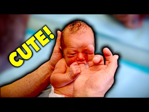 NEWBORN BABY'S FIRST VISIT (So Cute) | Dr. Paul
