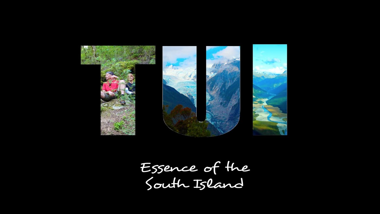 8807a56f Essence of the South Island 'Tui' Trip | Active Adventures