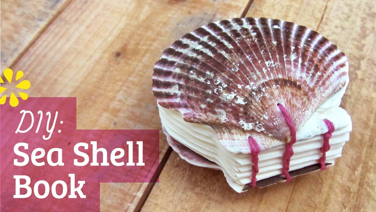 Diy sea shell book coptic stitch bookbinding sea lemon for What are shells made of