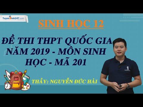 Đề thi THPT QG môn Sinh năm 2019 (Mã 201) – Thầy Nguyễn Đức Hải