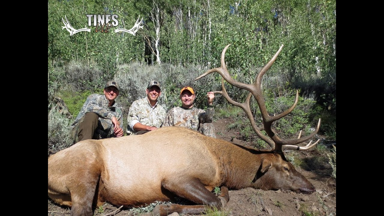 2013 fish lake elk hunt tines up youtube for Utah fish finder