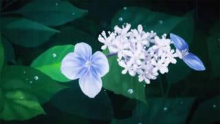 yung sherman - ・゜゜・IN LUV WIT U・゜゜・.