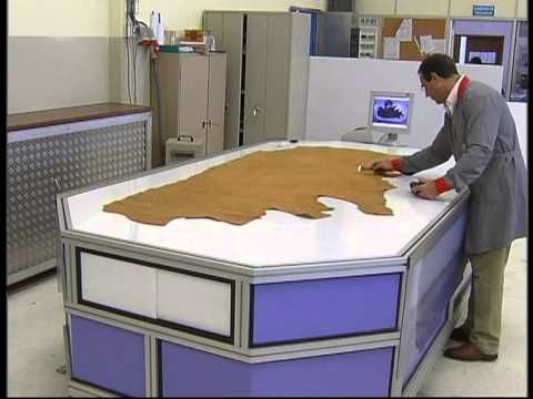 Leather Scanning System - CEI by Zipor
