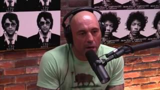 Joe Rogan & Dan Bilzerian on Fighting and Happiness
