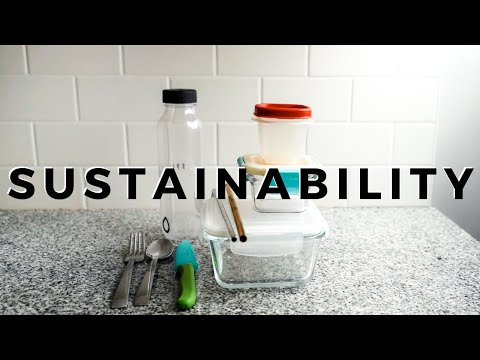 5 WAYS TO LIVE MORE SUSTAINABLY NOW 🍃🌍 | sustainable living for beginners AD