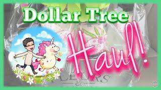 Dollar Tree Haul 💰 | Birthday Gift Idea 🎂 | New Bolero! 🌺