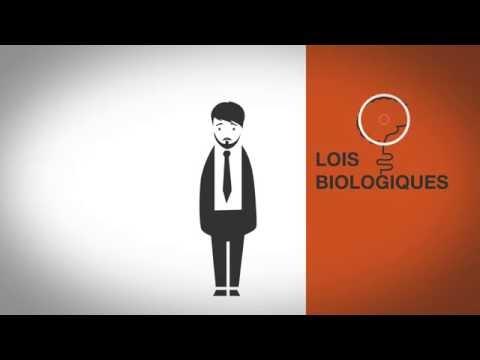 Les lois biologiques simplifiées