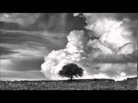 Bob Moses - Far From The Tree • (Original Mix)