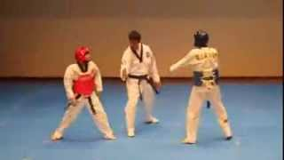 Luta do século ! Todos os tempos   Taekwondo   Papa Americano   Anderson Silva Chris Weidman UFC