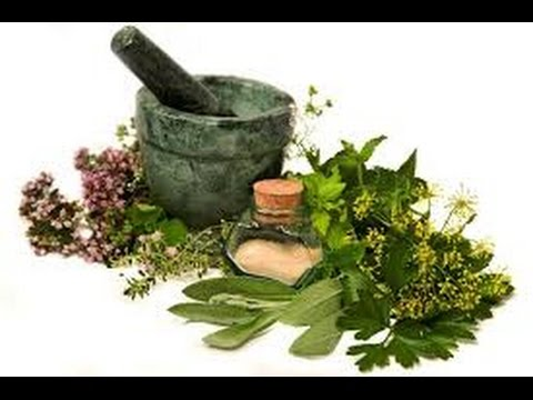 An introduction to the business of herbal products