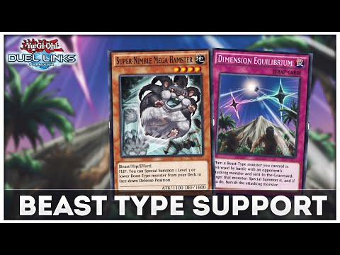 new-beast-type-support!-dimension-equilibrium!-[yu-gi-oh!-duel-links]