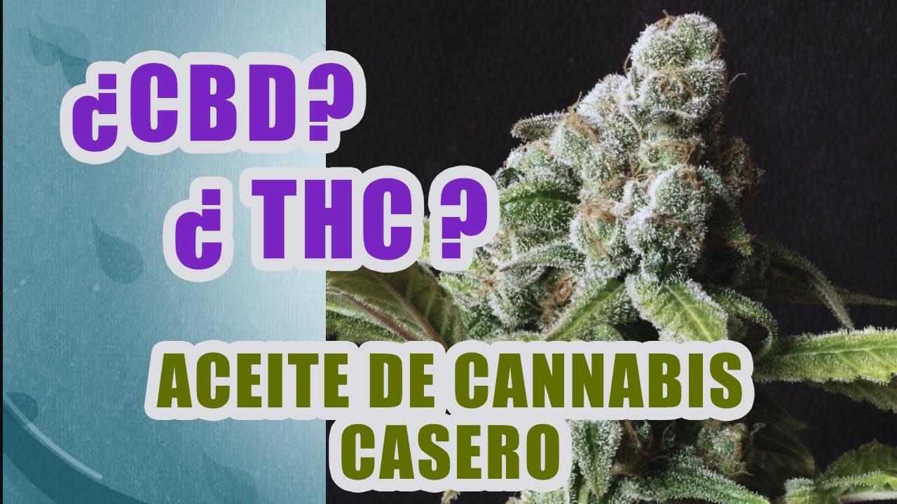 Aceite de CANNABIS - CBD - THC - Cómo hacerlo en casa facil
