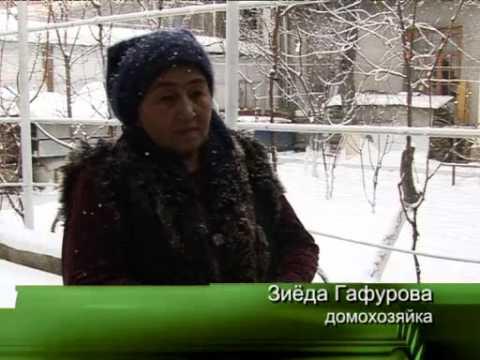 Холодная зима Узбекистан
