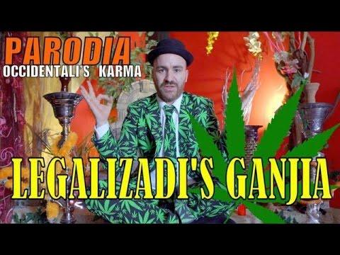 PANCIO - LEGALIZADI'S GANJIA  (PARODIA OCCIDENTALI'S KARMA)