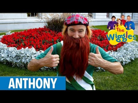 The Wiggles- Michael Finnegan (Official Video)