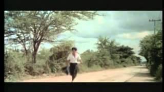 Wie Bruce Lee wirklich starb
