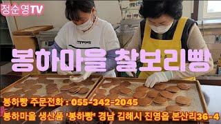 봉하마을 찰보리빵 2021년 3월 9일