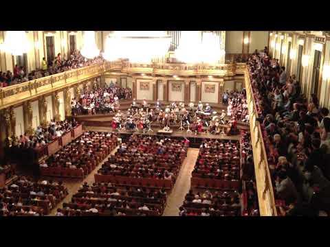 Vienna Mozart Orchestra (Vienna, Austria)