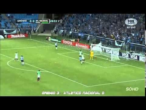 Todos Los Goles de la Copa Libertadores de America 2014 (Parte 1)