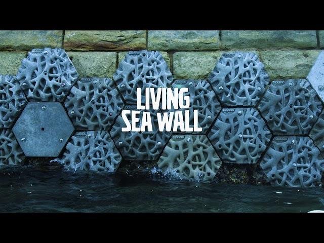 Volvo Living Seawall in Sydney Harbour