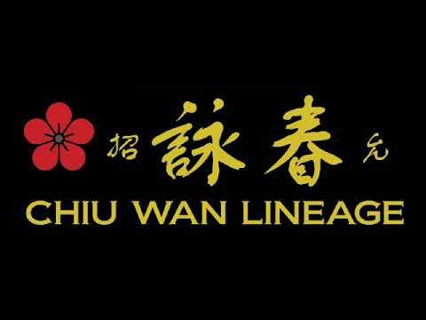 Visiting Crotia Jiu Wan (Chiu Wan) lineage Wing Chun