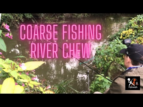 Coarse Fishing On The River Chew