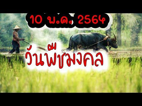 วันพืชมงคล2564 🙂   วันหยุดราชการ   พิธีจรดพระนังคัลแรกนาขวัญ   วันเกษตรกรไทย