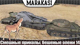 World of Tanks Смешные приколы, бешеные олени 14 им ничего за это не будет в wot