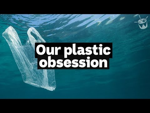 HACK: How our plastic obsession is killing sea birds