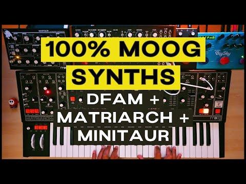 Analog Chorale (Moog DFAM + MF Delay // Matriarch + Strymon Bigsky // Minitaur)
