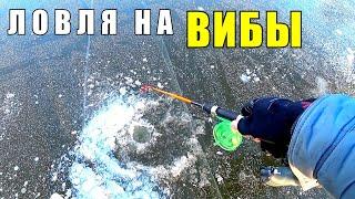 ПОКАЧАЛ И ПОКЛЁВКИ Ловля ЩУКИ на ВИБЫ и балансир со льда на реке Зимняя рыбалка 2020 2021