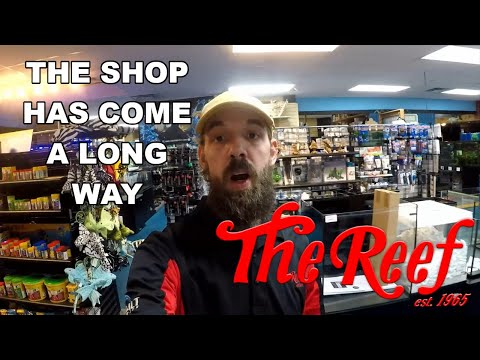 WELCOME TO THE REEF AQUARIUM SHOP 2.0 | UPDATED STORE TOUR
