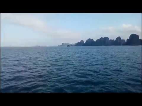 Review Hạ Long Bay Và Cái Kết Đi Bắt Ốc Biển.